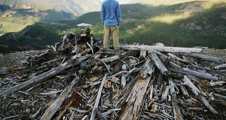 O desmatamento é uma das causas do aquecimento global
