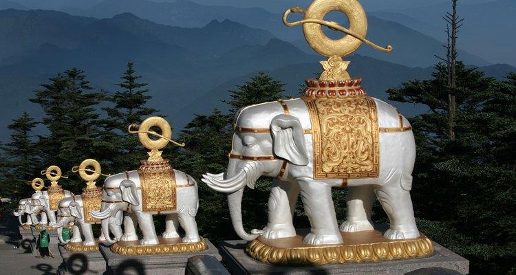 Los elefantes blancos son considerados sagrados a lo largo de Vietnam y la mayor parte de Asia.
