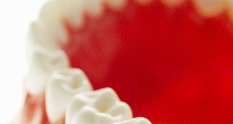 ¿Cuánto tiempo debo esperar para conseguir prótesis dentales después de una extracción dental?