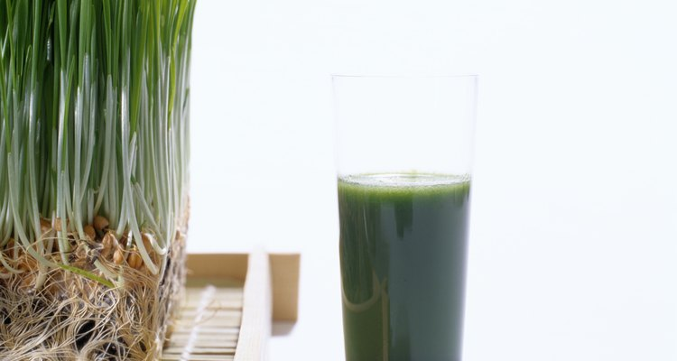 Wheat grass and juice.