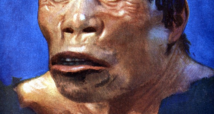 Homem da caverna é um nome comum para aqueles que viveram no Período Paleolítico
