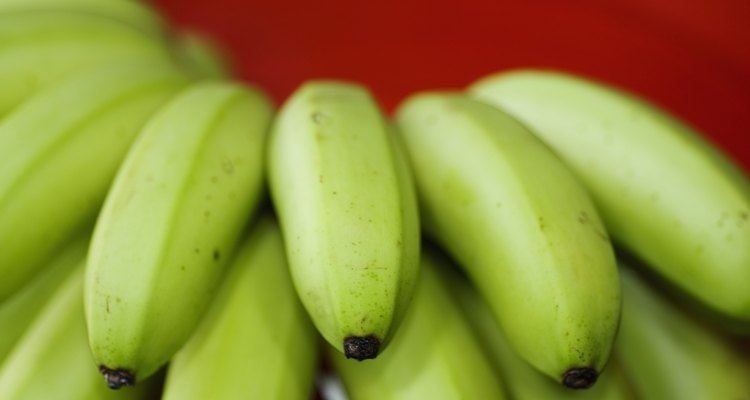 Close-up of green bananas with a red background.