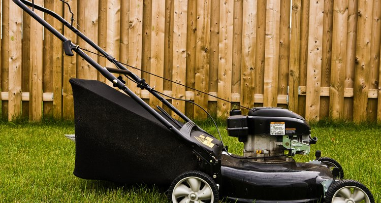 Lawnmowers can be part of the problem.