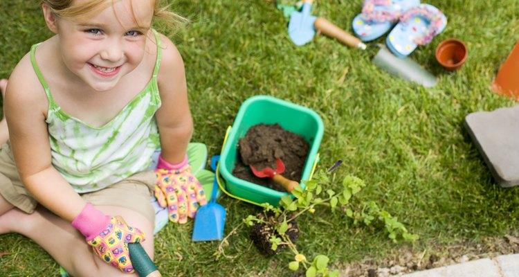 Los niños pueden aprender una gran cantidad de lecciones de ciencias al plantar semillas.