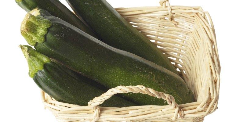 Las plantas de calabacín saludables producen calabacines más grandes.