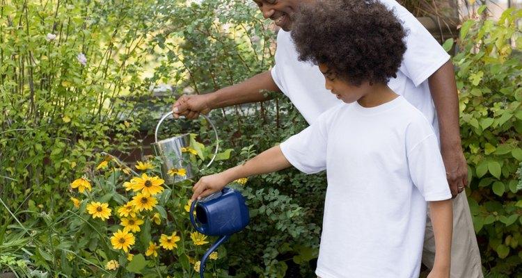 No riegues una planta saludable con agua azucarada.