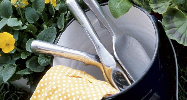 Cultiva tu planta Estrella del Belén en interiores, si vives un zonas de clima frío.