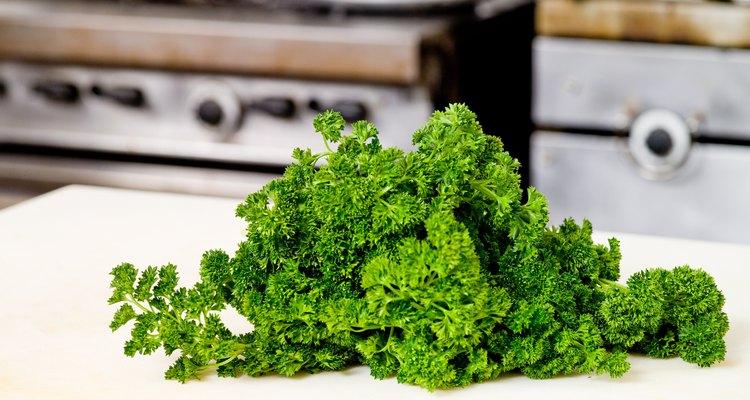 Este perejil de hoja rizada puede reemplazar al cilantro, pero el de hoja plana es una mejor opción.