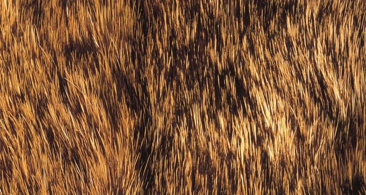 Amacie os couros curtidos trabalhando com eles repetidamente enquanto estiverem úmidos