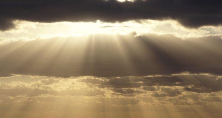 A lentilha-d'água precisa de luz solar