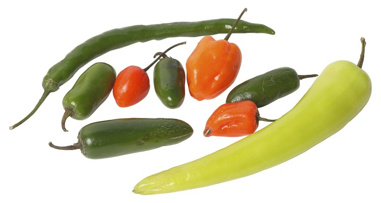 Peppers grow much more quickly with hydroponics.
