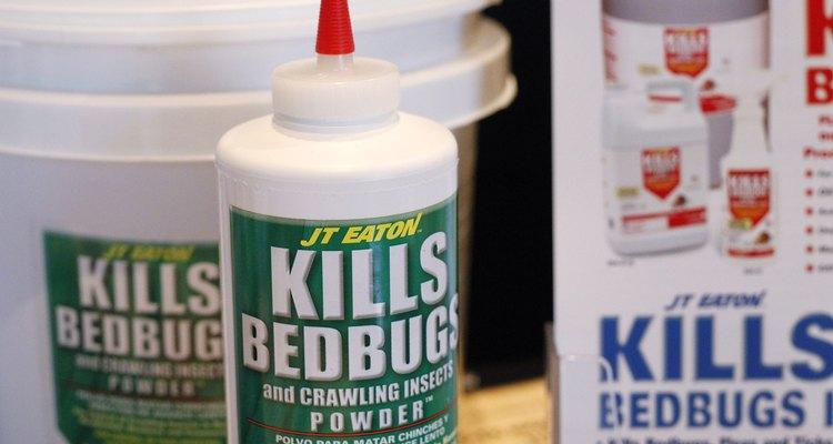 Na dedetização profissional utilizam-se produtos químicos para resolver uma infestação de percevejos