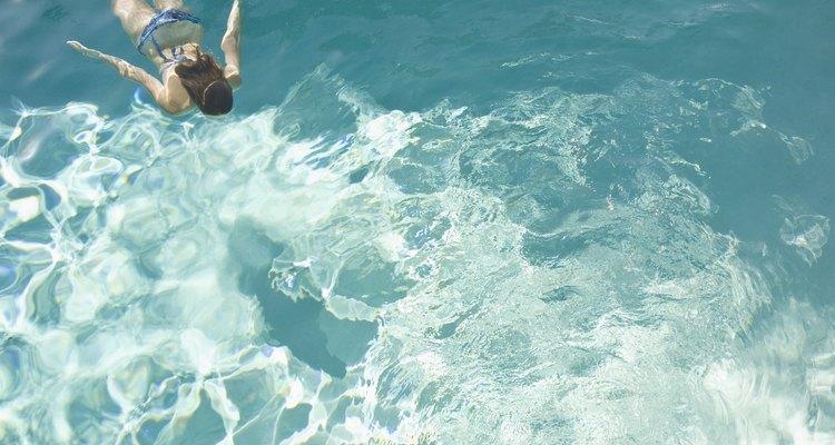Necesitas los elementos necesarios para limpiar los azulejos de tu piscina.