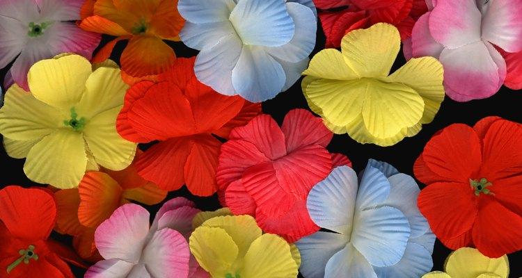 El resultado es una planta de múltiples colores.