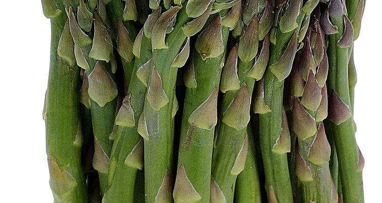 El espárrago es una de las pocas plantas comestibles en la familia que da semillas y no frutos.