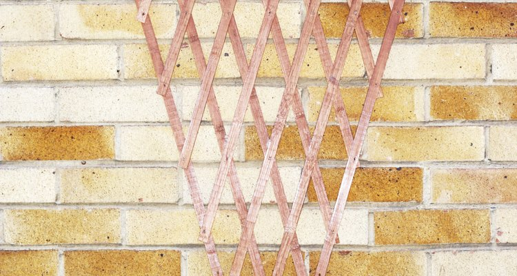 Install a trellis on your brick wall to add a decorative touch to your garden.