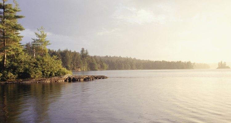 A depleção de oxigênio é a queda no oxigênio dissolvido presente na água