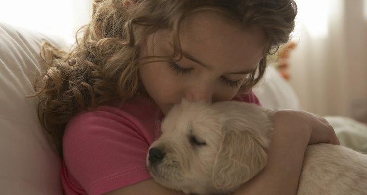 Pasar la aspiradora a menudo y mantener limpio al animal puede ayudar a mantener a tu hijo sano y salvo.