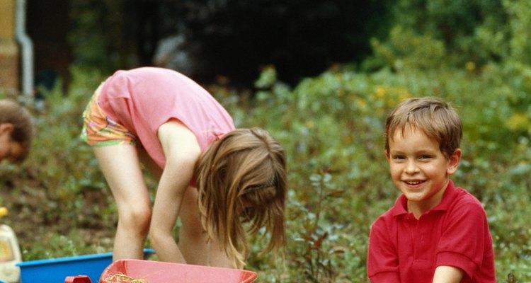 Los herbicidas utilizados para controlar malezas pueden ser preemergentes o postemergentes.
