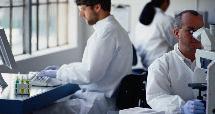 Químicos trabalhando no laboratório