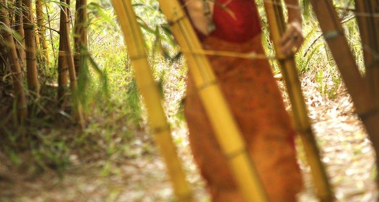 El bambú es de las telas más utilizadas por los diseñadores de hoy en día, porque es un género altamente sustentable.