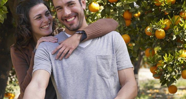 En algunos casos, la fruta es cosechada durante el tiempo de floración.