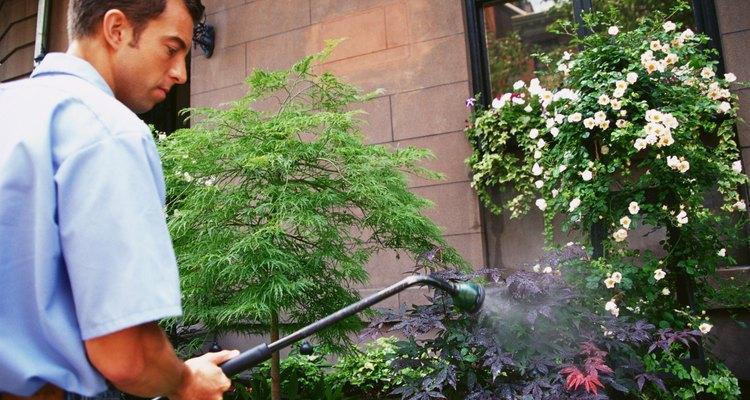 O herbicida Roundup tem ajudado as donas de casa desde 1973