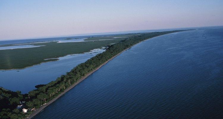 La bahía de la isla Presque sirve como un lugar natural de desove y alimentación de muchos de los peces nativos del lago Erie.