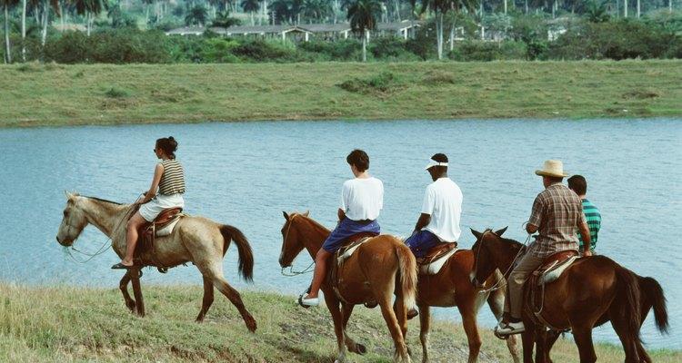 Podrás apreder a montar a caballo.