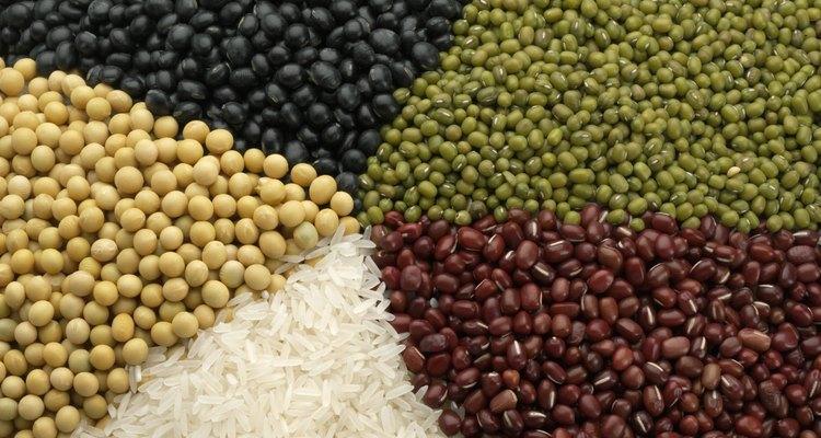 Las plantas almacenan la mayor parte de sus almidones comestibles en sus semillas y raíces.