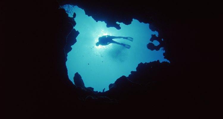 Bucea en el profundo mar azul que rodea la isla.