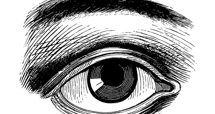 En el momento en que tu niño tenga 2 años de edad, su vista se ha desarrollado hasta el punto de que se da cuenta de más detalles que nunca antes.