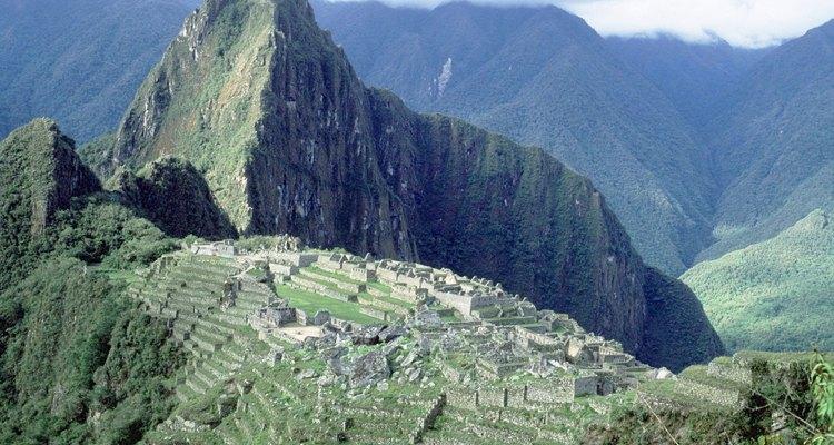 La quinoa se ha cultivado en los Andes por más de 5.000 años.