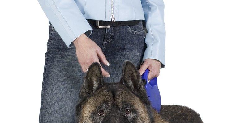 Las correas retráctiles ajustables le da al perro la libertad al caminar.