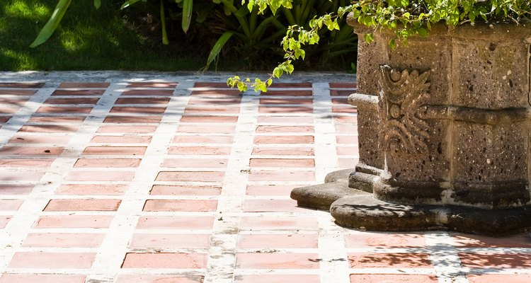 Pés de manjericão crescem melhor em jardins bem iluminados