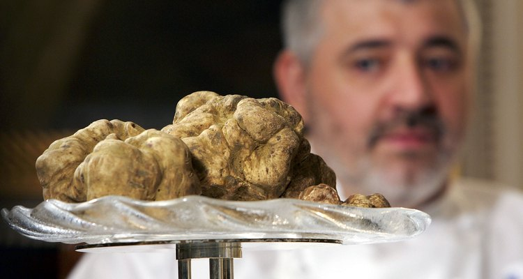 The Oregon white truffle is found in the Pacific Northwest from British Columbia to Northern California.