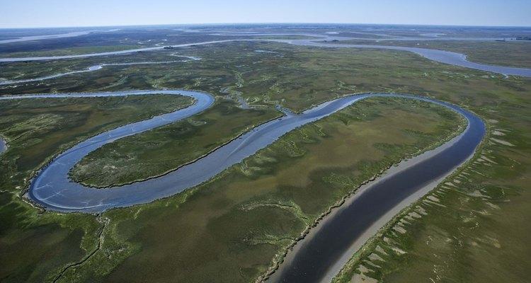 Los ríos en Georgia proveen de muchas oportunidades de pescar peces de agua dulce a los visitantes