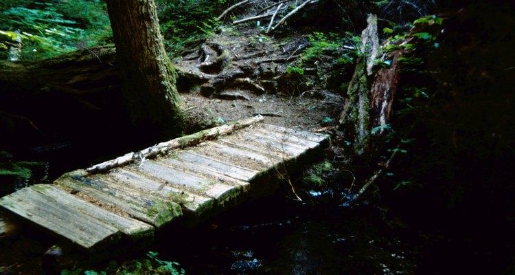 Uma pequena ponte dá acesso ao outro lado do pequeno riacho