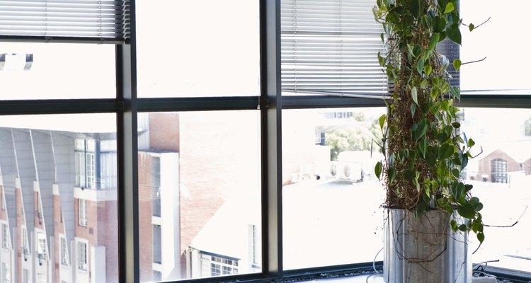 El diseño de la ubicación en tu oficina.