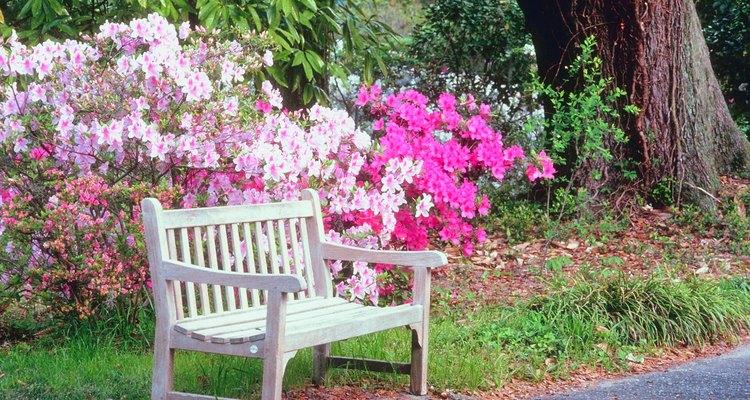 Prepara el suelo para cultivar un jardín de flores.