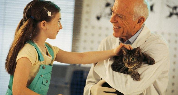 Peça que sua filha ajude a escrever a mensagem de agradecimento ao veterinário
