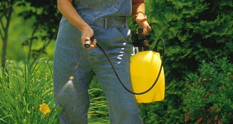 Los fertilizantes orgánicos son cada vez más populares.