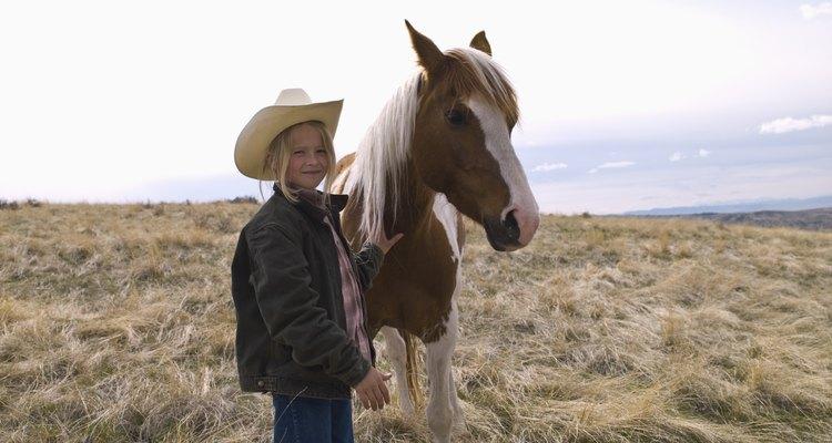 Seu cavalo gosta que você lhe coce e faça carinhos, então faça-os bastante
