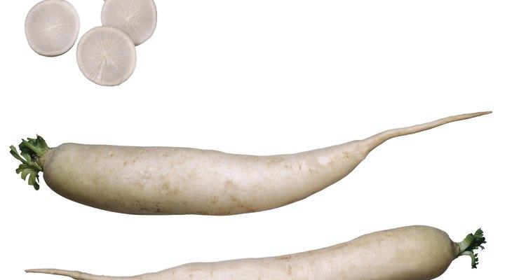 Daikon es un nombre común utilizado para las variedades de rábano chino y japonés.