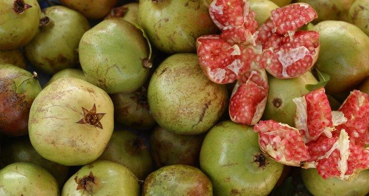 En la India, el granado da frutos (el bedana) crece silvestre y en las granjas de granada.