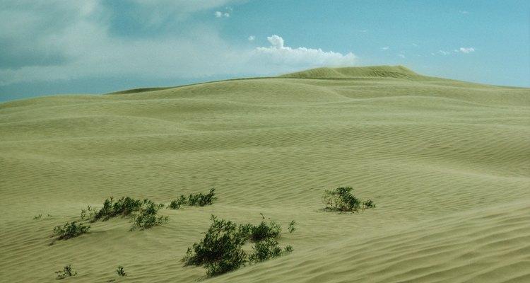 Aprovecha los paisajes dunares de Michigan para caminar y acampar.