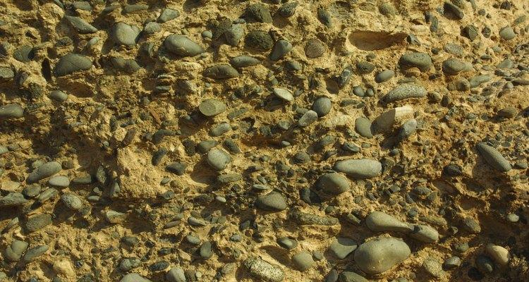 El suelo está compuesto por cinco componentes principales, incluyendo el agua.