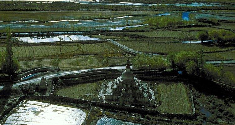 Los biofertilizantes se están adoptando cada vez más en las granjas, sobre todo en las regiones tropicales.
