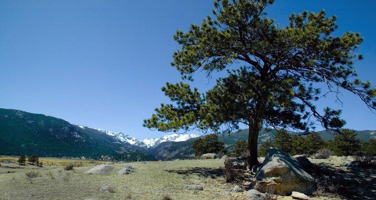 El paisaje en Colorado es impresionante.