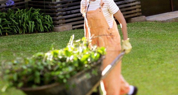 Lleva las herramientas y artículos de jardinería en una carretilla.